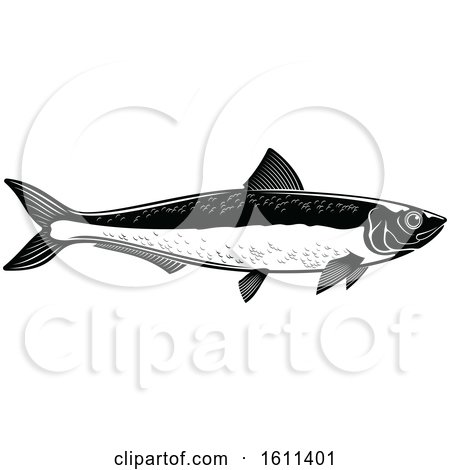Clipart of a Black and White Fish - Royalty Free Vector Illustration by Vector Tradition SM