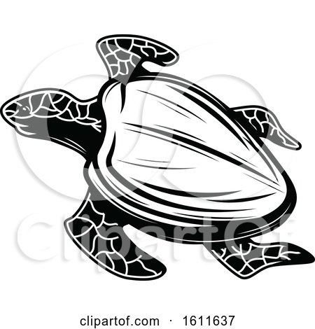 Clipart of a Black and White Sea Turtle - Royalty Free Vector Illustration by Vector Tradition SM