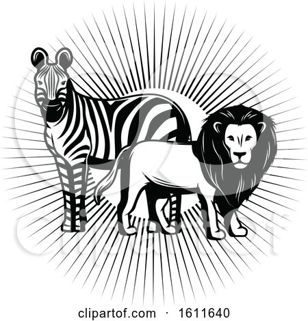 Clipart of a Black and White Zebra and Male Lion over Sun Rays - Royalty Free Vector Illustration by Vector Tradition SM