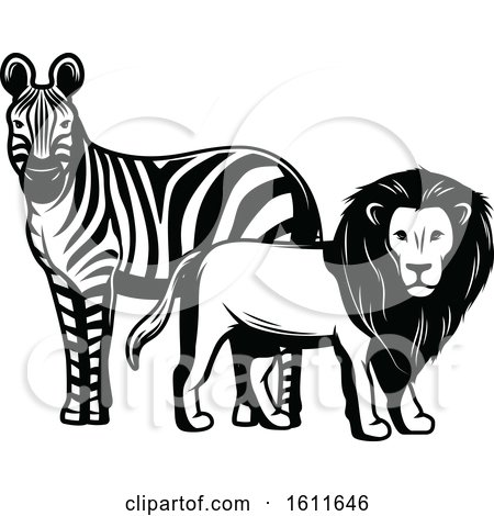 Clipart of a Black and White Zebra and Male Lion - Royalty Free Vector Illustration by Vector Tradition SM