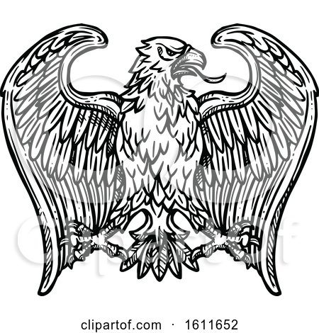 Clipart of a Sketched Black and White Eagle - Royalty Free Vector Illustration by Vector Tradition SM