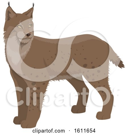 Clipart of a Lynx - Royalty Free Vector Illustration by Vector Tradition SM