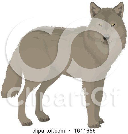 Clipart of a Wolf - Royalty Free Vector Illustration by Vector Tradition SM