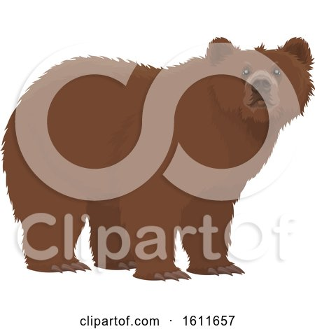 Clipart of a Bear - Royalty Free Vector Illustration by Vector Tradition SM