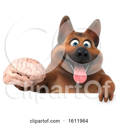 Clipart of a 3d German Shepherd Dog Holding a Brain, on a White Background - Royalty Free Illustration by Julos