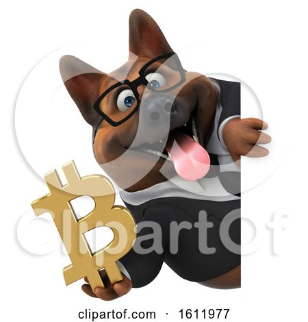 Clipart of a 3d Business German Shepherd Dog Holding a Bitcoin Symbol, on a White Background - Royalty Free Illustration by Julos