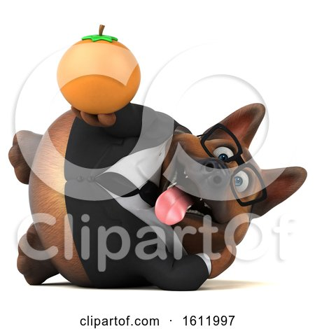Clipart of a 3d Business German Shepherd Dog Holding an Orange, on a White Background - Royalty Free Illustration by Julos