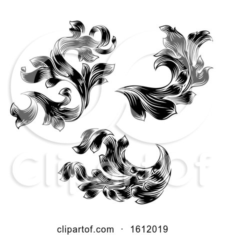 Heraldic Floral Filigree Pattern Scroll Design Set by AtStockIllustration