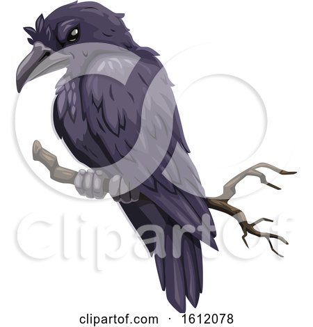 Clipart of a Black Raven or Crow - Royalty Free Vector Illustration by Vector Tradition SM