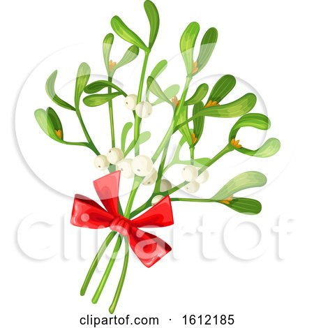 Clipart of a Sprig of Mistletoe - Royalty Free Vector Illustration by Vector Tradition SM