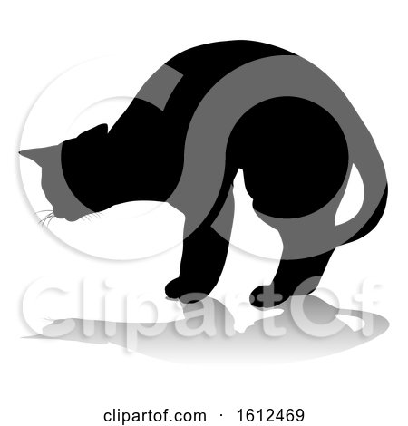 Silhouette Cat Pet Animal, on a white background by AtStockIllustration