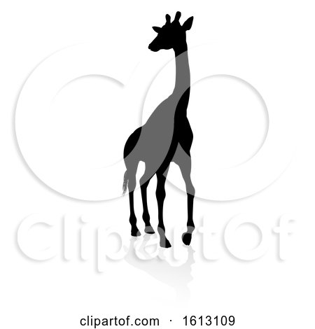 Giraffe Safari Animal Silhouette, on a white background by AtStockIllustration