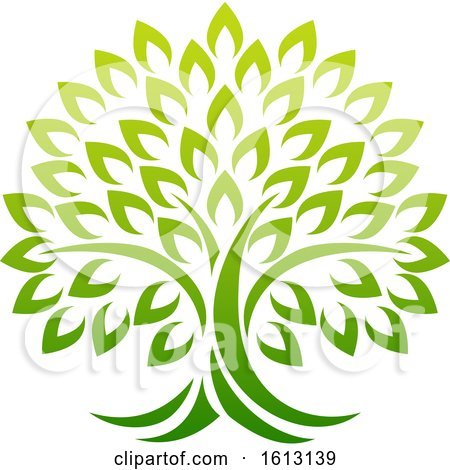 Tree Icon Concept of a Stylised Tree with Leaves by AtStockIllustration