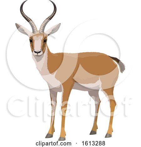 Clipart of a Gazelle - Royalty Free Vector Illustration by Vector Tradition SM