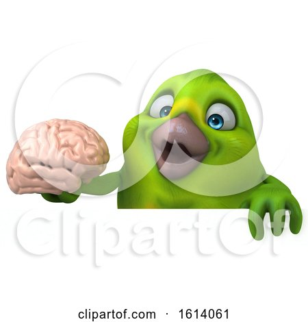 Clipart of a 3d Green Bird, on a White Background - Royalty Free Illustration by Julos