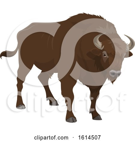 Clipart of a Bison - Royalty Free Vector Illustration by Vector Tradition SM