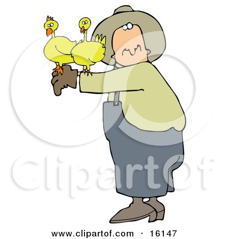 Male Farmer Holding Two Yellow Chickens On His Arm Clipart Illustration by djart