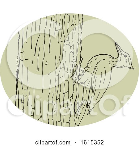 Clipart of a Sketched Woodpecker on Tree Trunk - Royalty Free Vector Illustration by patrimonio