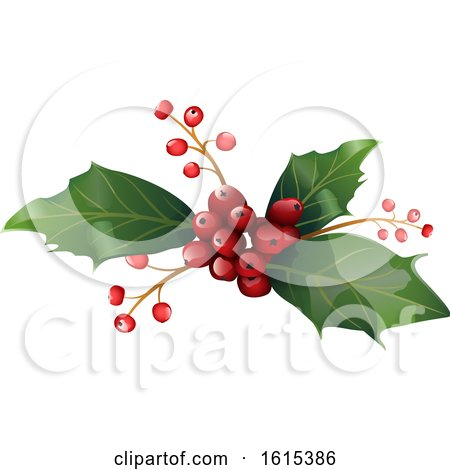 Clipart of a Sprig of Christmas Holly - Royalty Free Vector Illustration by dero