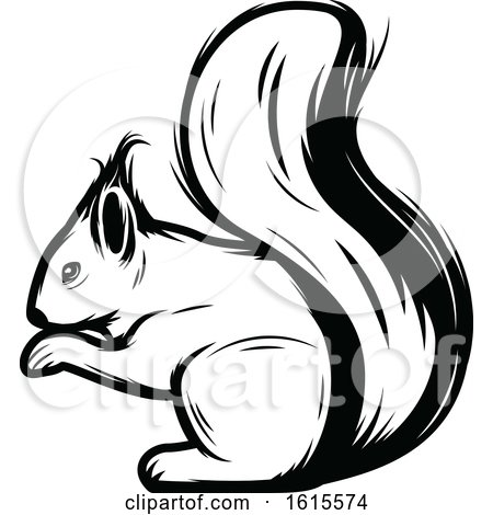 Clipart of a Black and White Squirrel - Royalty Free Vector Illustration by Vector Tradition SM