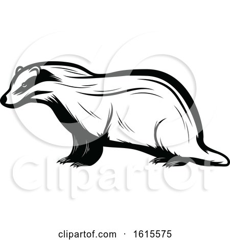 Clipart of a Black and White Badger - Royalty Free Vector Illustration by Vector Tradition SM