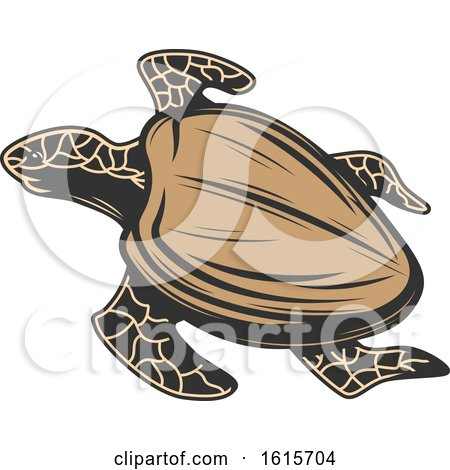 Clipart of a Sea Turtle - Royalty Free Vector Illustration by Vector Tradition SM
