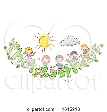 Doodle Kids Photosynthesis Tomato Illustration by BNP Design Studio