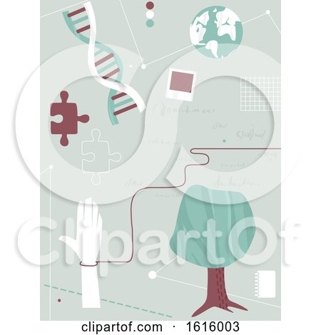 Genealogy Design Background by BNP Design Studio