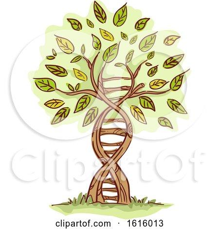 Tree Illustration by BNP Design Studio