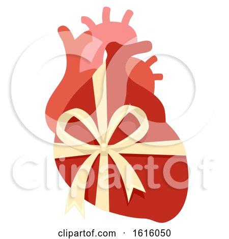Donate Organ New Heart Illustration by BNP Design Studio