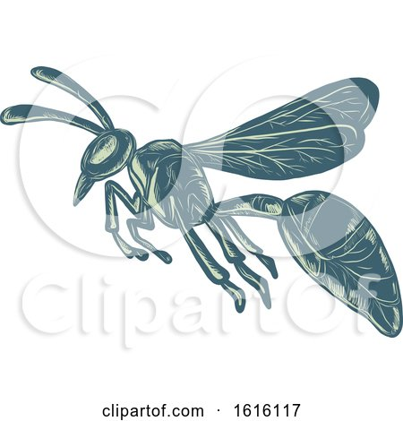Clipart of a Scratchboard Style Wasp Yellowjacket or Hornet Flying - Royalty Free Vector Illustration by patrimonio