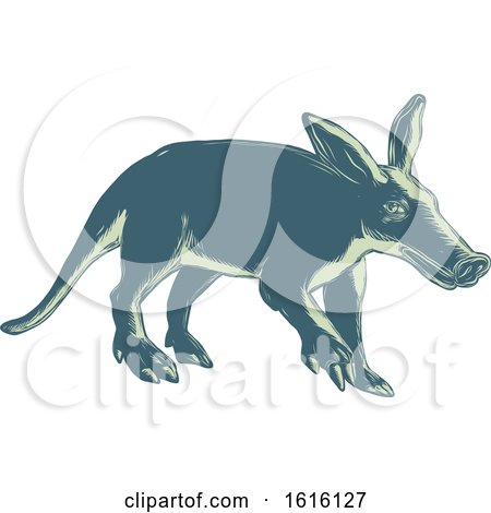 Clipart of a Scratchboard Style Aardvark - Royalty Free Vector Illustration by patrimonio