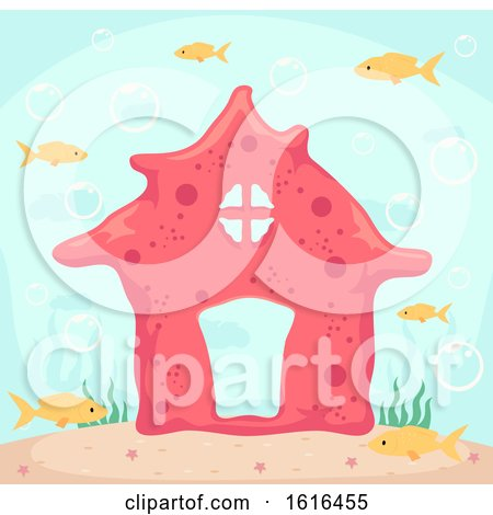 Coral House Fishes Illustration by BNP Design Studio