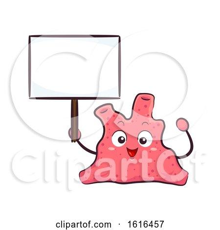 Mascot Coral Boards Illustration by BNP Design Studio