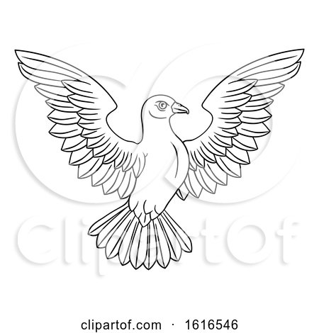 Black and White White Dove Concept by AtStockIllustration