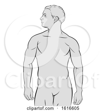 Human Male Figure Outline by AtStockIllustration