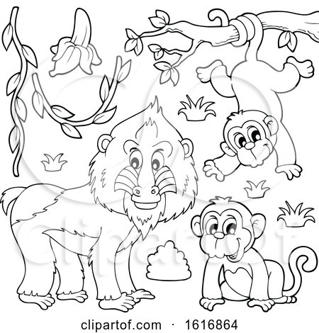 Clipart of a Black and White Mandrill and Monkeys - Royalty Free Vector Illustration by visekart