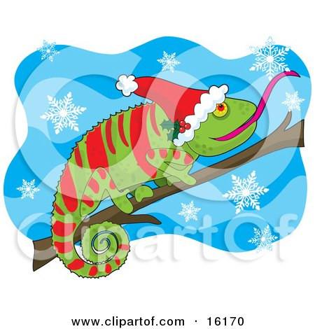Green And Red Chameleon Lizard Wearing A Santa Hat Adorned With Holly, Sticking His Tongue Out To Catch A Snowflake While Perched On A Branch On Christmas Clipart Illustration Image by Maria Bell