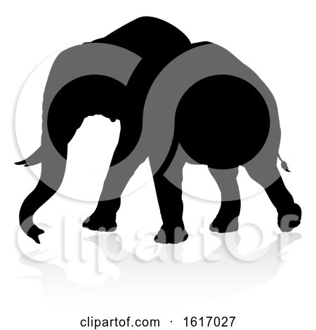 Elephant Safari Animal Silhouette, on a white background by AtStockIllustration