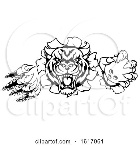 Tiger Holding Bowling Ball Breaking Background by AtStockIllustration