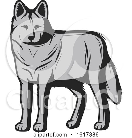 Wolf by Vector Tradition SM