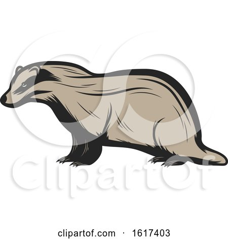 Badger by Vector Tradition SM