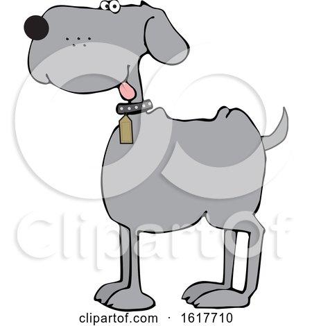 Cartoon Happy Gray Dog by djart