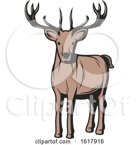 Buck Deer by Vector Tradition SM