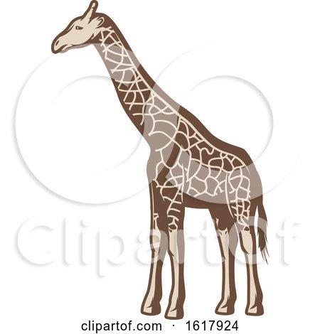 Giraffe by Vector Tradition SM