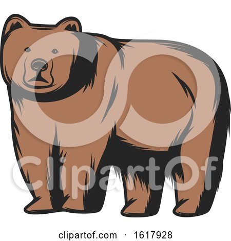 Bear by Vector Tradition SM