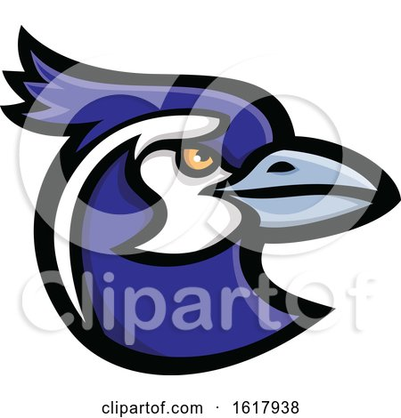 Black Throated Magpie Jay Bird Head Mascot by patrimonio