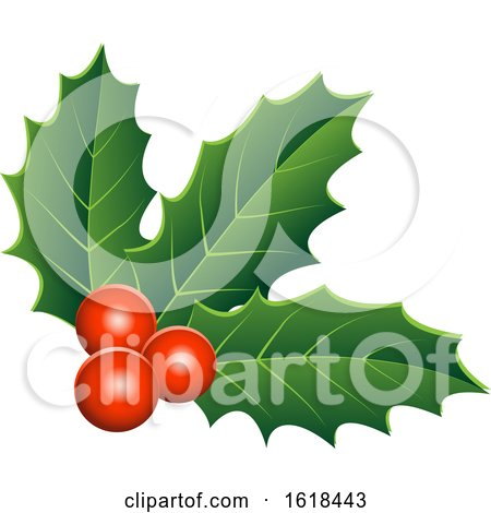 Christmas Holly and Berry Design Element by cidepix