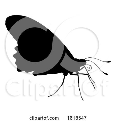 Butterfly Insect Animal Silhouette by AtStockIllustration