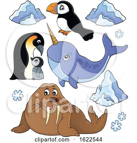 Arctic Animals by visekart